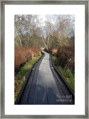 What Lies Ahead Framed Print by Bill Thomson