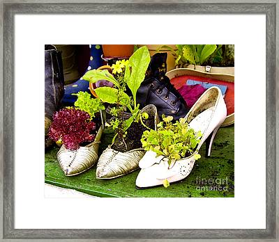 What To Do With Old Shoes Framed Print by Jo