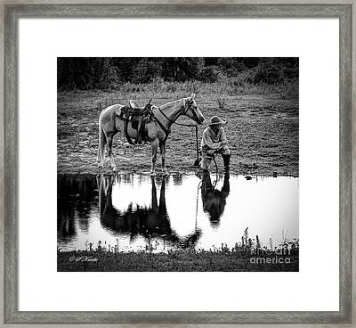 What's That Noise Framed Print