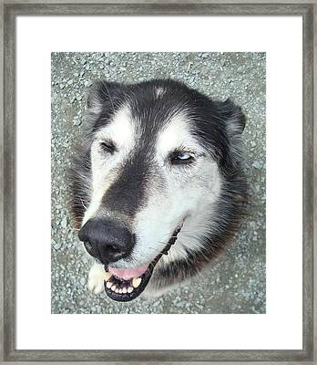 Whazzup Dude Framed Print