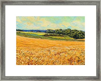 Wheat Field In Limburg Framed Print