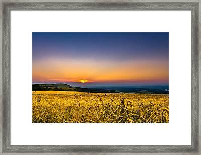 Wheat Field Framed Print by Rob Webb