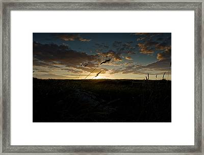 Wheat Fields  Framed Print