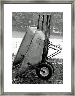 Wheelbarrows Framed Print by Lisa Phillips