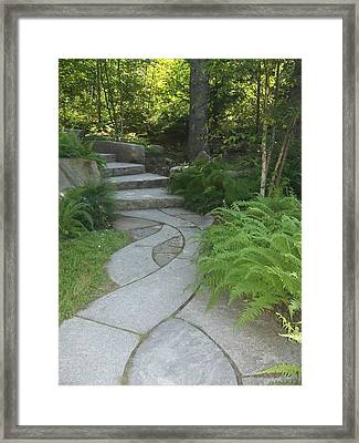 When Paths Intertwine Framed Print