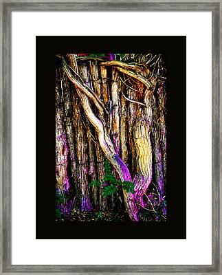 Framed Print featuring the photograph When Sound Is Color by Susanne Still