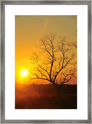 When The Day Is Over Framed Print by Jan Amiss Photography