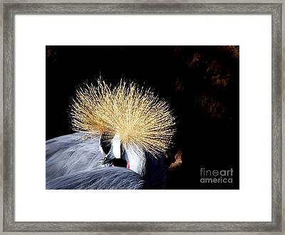 When We Put Our Heads Together Framed Print by Donna Parlow