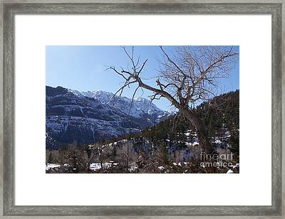 Where Dreams Begin Framed Print