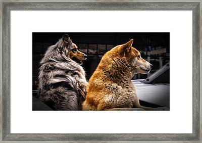 Where Is He? Framed Print by Sandra Selle Rodriguez