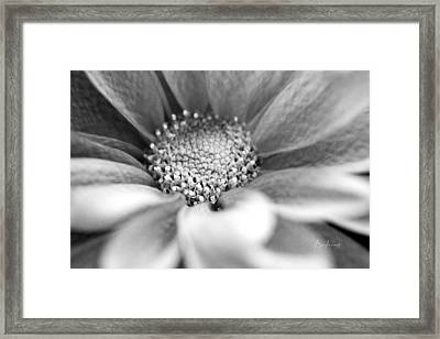 Where It All Begins Framed Print