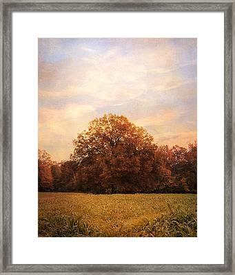 Where Memories Are Made Framed Print by Jai Johnson