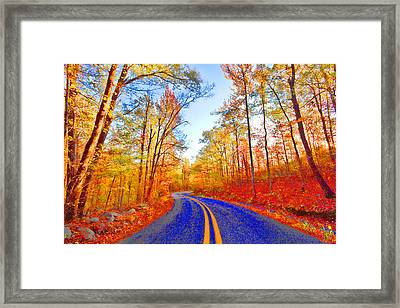 Where The Road Snakes Framed Print by Douglas Barnard