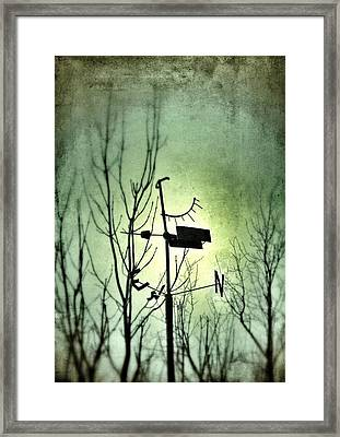 Where The Wind Takes Me... Framed Print