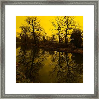Where To Next Framed Print by Martin Crush