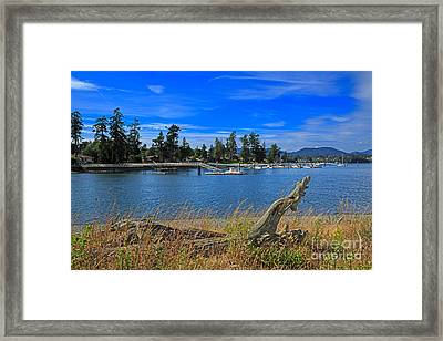 Whiffin Spit And The Harbor At Sooke Framed Print by Louise Heusinkveld