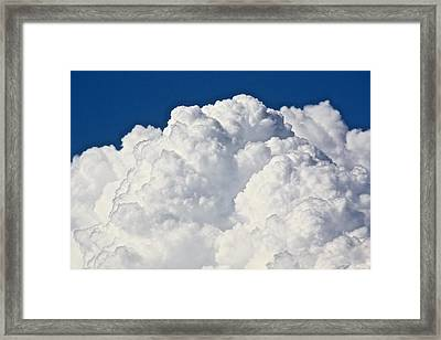 Whipped Cream Framed Print