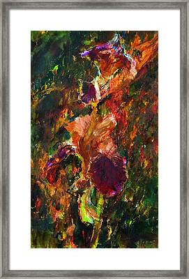 Whirlpool Framed Print by Petro Bevza