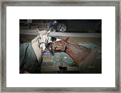 Whisper Framed Print by John Jeevaratnam