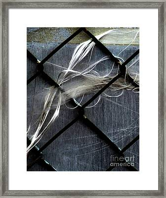Framed Print featuring the photograph Whispered by Newel Hunter
