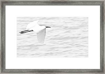 Whispering White Framed Print