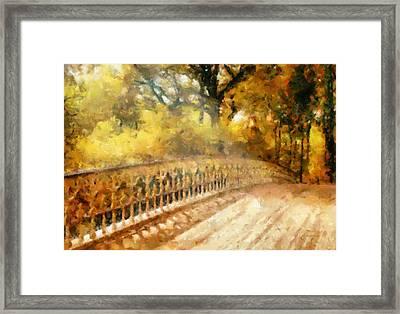 Whispers On A Bridge Framed Print by Georgiana Romanovna