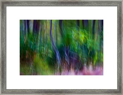 Whispers On The Wind Framed Print