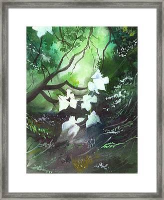 White Begonia Framed Print by Anil Nene