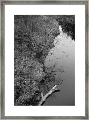 White Branch Riverside  Framed Print
