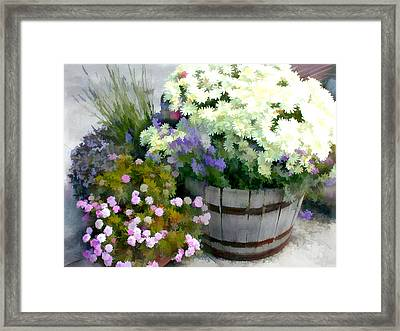 White Chrysanthemums In A Barrel Framed Print by Elaine Plesser