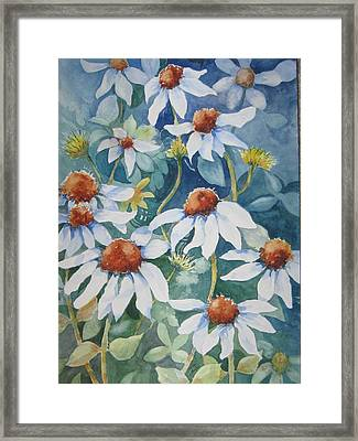 White Coneflowers II Framed Print