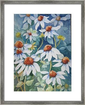 White Coneflowers II Framed Print