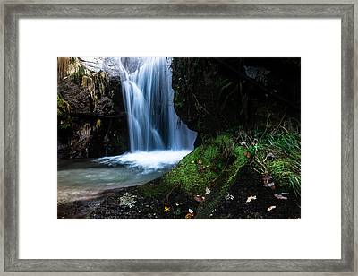 White Dream Framed Print