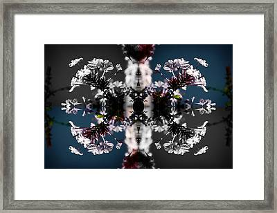 White Flowers Framed Print