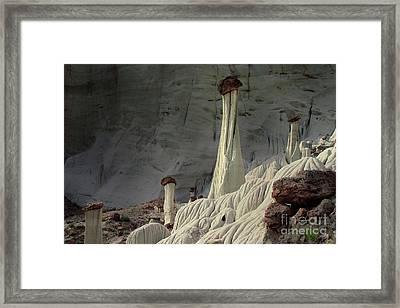 White Ghosts Framed Print