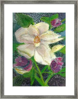 White Happy Flower Framed Print by Anne-Elizabeth Whiteway