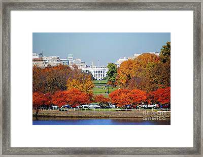 White House Foliage Framed Print by Jost Houk