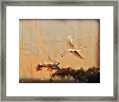 White Lake Swamp Sunrise - Egret Framed Print by J Larry Walker