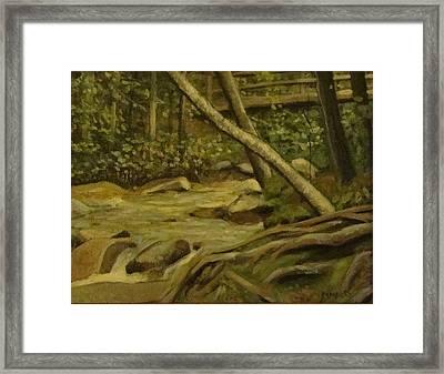 White Mountain Stream Framed Print by Mark Haley
