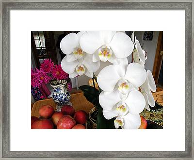 White Orchid Framed Print by Vicky Tarcau
