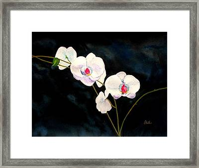 Framed Print featuring the painting White Orchids by Alethea McKee