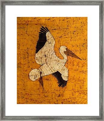 White Pelican Framed Print by Alexandra  Sanders