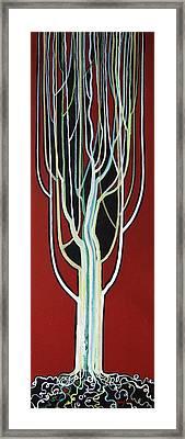 White Poplar Framed Print by Alain Guiguet