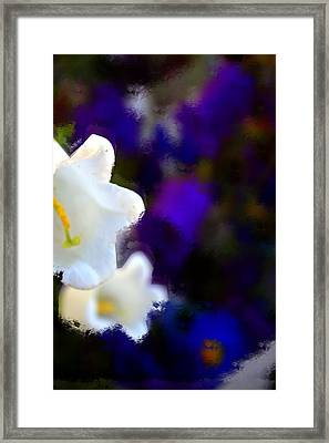 White Purple Framed Print
