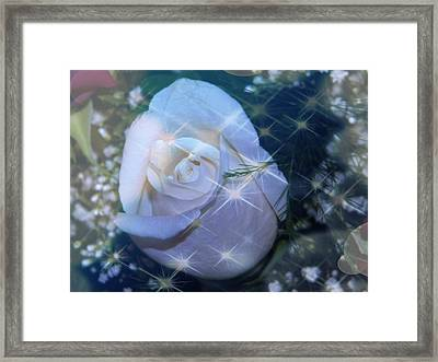 White Rose Framed Print by Michelle Frizzell-Thompson