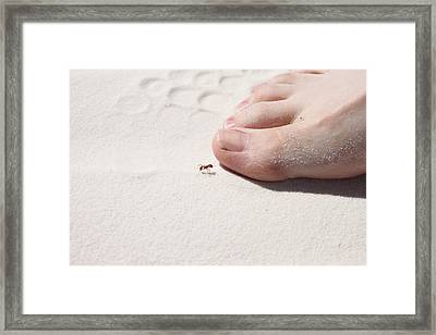 White Sand Toes Framed Print by Snow  White