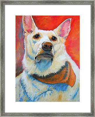 White Shepherd Framed Print