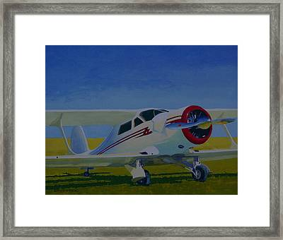 White Stagg Framed Print by Ron Smothers