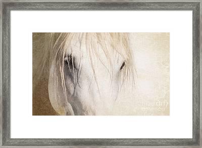 White Stallion Framed Print by Heather Swan