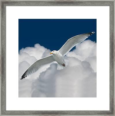 White Surfer Framed Print by Ian David Soar